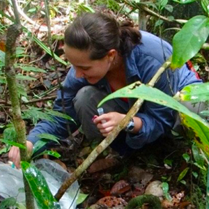 Lab for Primate Dietary Ecology and Physiology