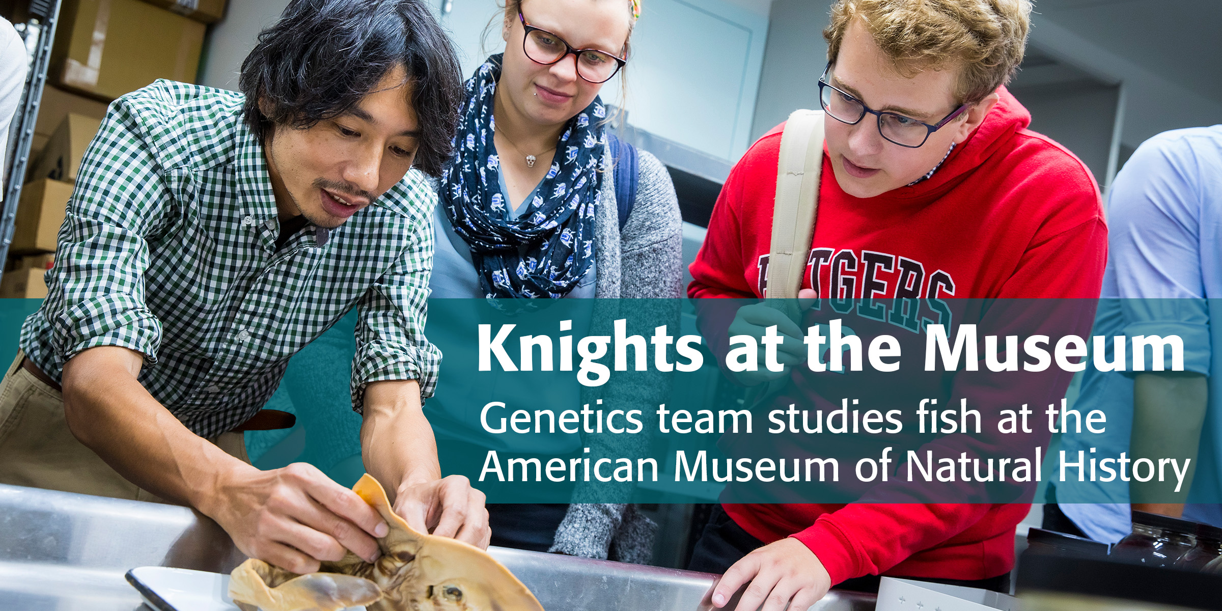 Knights at the Museum: Genetics team studies fish at the American Museum of Natural History