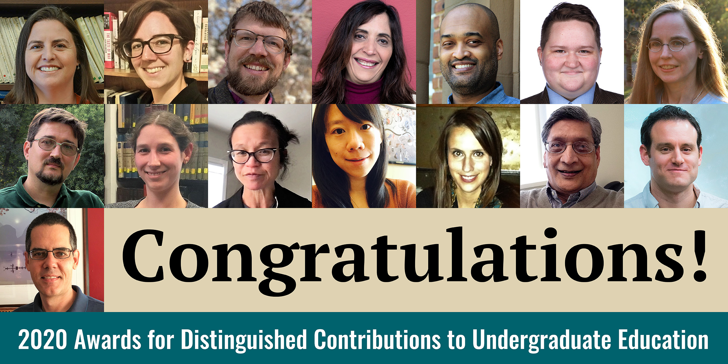 2020 Awards for Distinguished Contributions to Undergraduate Education