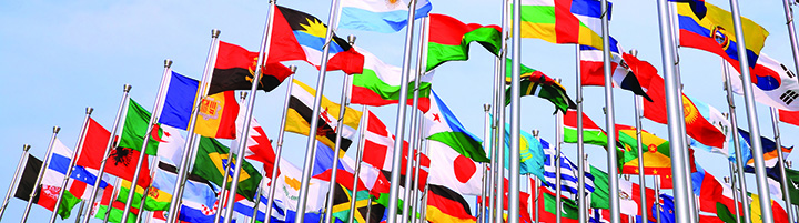 Global Challenges UN flags cropped